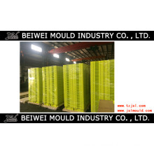 Plastic Injection New Fish Crate Mould