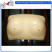 Modelo de auto-exame de mama realista ISO