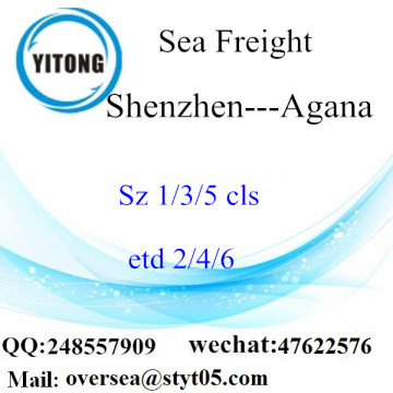 Shenzhen Port LCL Consolidation To Agana