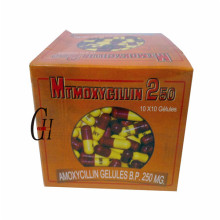Amoxicillin Capsules 250mg