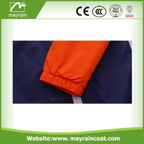 Comfortable Classical Sports Wear