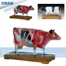 A08 (12007) modelos de acupuntura de vaca anatômica gado veterinário 12007