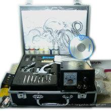 kit professionnel de tatouage de deux pistolets pour le débutant du tatouage de limem