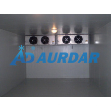 Professional Cold Room/Freezer with PU Sandwich Panel in Changzhou