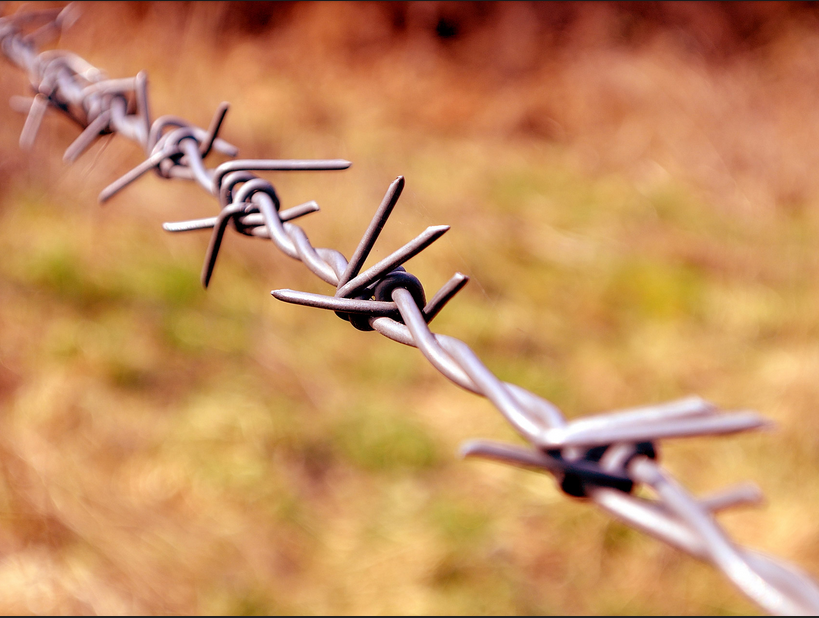 animal husbandry barbed wire