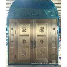 Puerta de acero de lujo elegante de la entrada