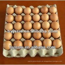 Embalagem de ovos de frango
