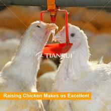 Sistema bebendo do bocal automático da galinha da exploração avícola de Tianrui
