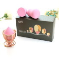 Beauty Blender Ei Makeup Cosmestics Puff Set