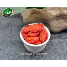 Chinese goji berry fruit goji berries for sale goji berry plants for sale with jiangnanhao