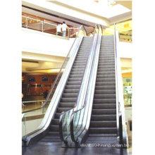 Fast Mechanical Escalator