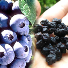 Rasa enak Snack Blue berry