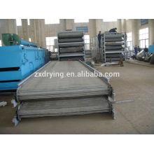 Serie DWT secador de malla para deshidratación vegetal, secador