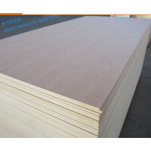 Poplar Core Ash Plywood with AAA Grade