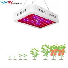 1000w rouge bleu blanc IR & UV LED élèvent des lumières