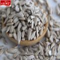 2017 crop wholesale new sunflower seed kernel