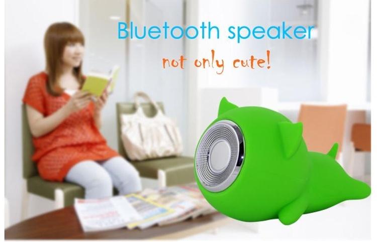 speaker hard case