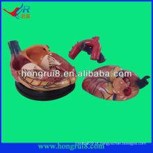Modelo de coração médico de alta qualidade para venda estilo novo 4 vezes maior coração anatômico de plástico