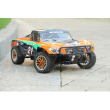 1: 10 RC Speed Car 2.4G Free Sample RC Car