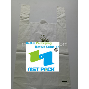 PLA Biodegradable Bag dengan Handle