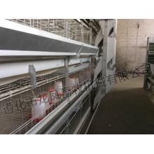 Hühnerkäfige für Geflügelfarm für Nigeria