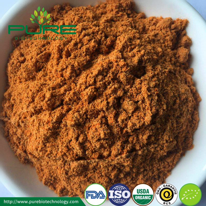 Organic Goji Berry Powder Goji Extract2