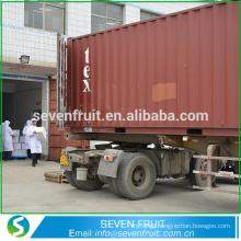 China exporter supply dried walnut walnut light halves