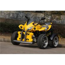 250cc Road Legal ATV с крышкой Big X (jy-250-1A)