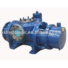 2LB horizontal twin screw pump