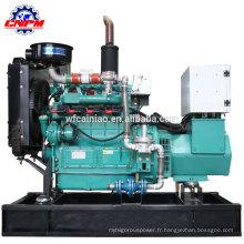 générateur de biogaz de bois / usine / gaz de paille 12kw