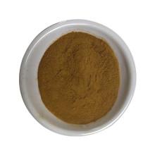 Effacer la chaleur et réguler les règles extrait d'agripaume leenurus heterophyllus extrait de léonurine en poudre 10:1 20:1 30:1
