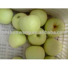 top class fresh golden delicious apple