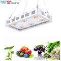 Cob led grow light de espectro completo 1800w