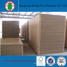 High Quality Tubular/Hollow Chipboard for Door Core