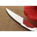 Aço inoxidável garfo e faca set
