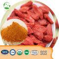 China organic healthy Factory Supply Goji Berry Juice Powder, High Quality Goji Berry Juice Powder,wolfberry extract