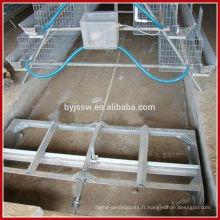 Machine automatique de retrait de fumier / équipement de ferme de volaille