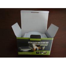 Eco-friendly impermeable IP65 CE ROHS puerta de alta calidad luces solares para jardín