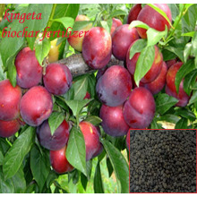 Garden Soil fertilizer carbon based organic fertilizer