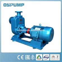 ZW electric motor irrigation pump