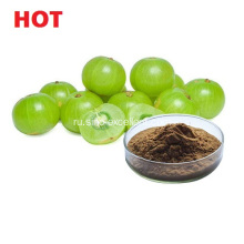 Phyllanthus Emblica Extract