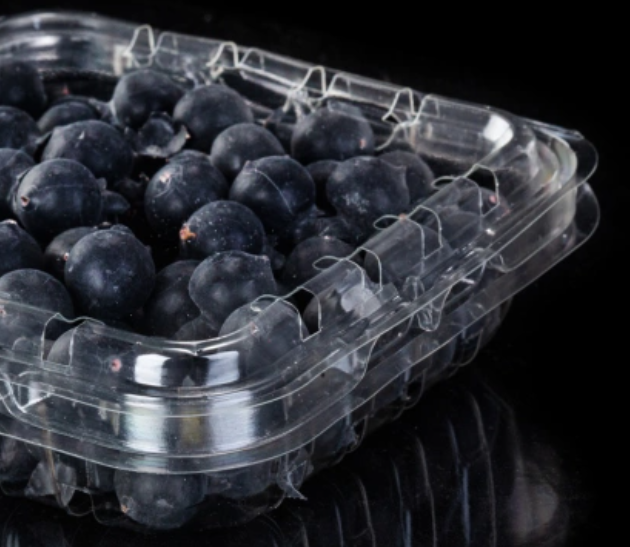 Blueberries, small tomatoes, grapes, flip-top containers,