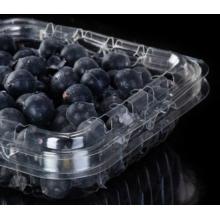 Plastic blueberry box for fruit supermarket