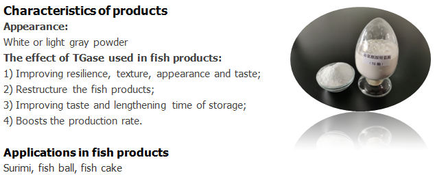 TGase for fish product