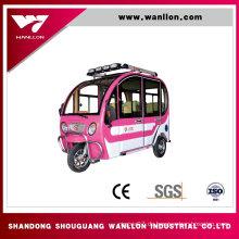 Rad-elektrischer Roller-Passagier-Dreirad des Erwachsenen-Dreirads des Fahrrad-800W