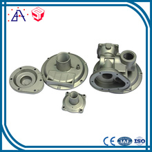 OEM Customized Die Casting Automobile Accessories (SY1095)