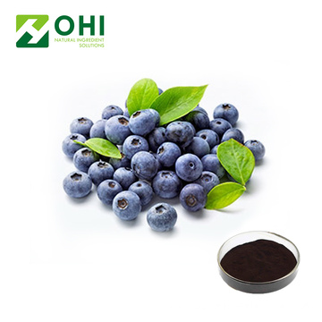 European Bilberries extract powder