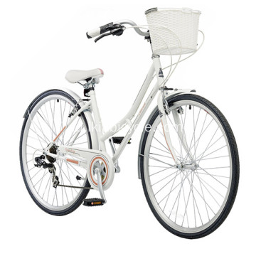 Single Speed City Bike with Lock