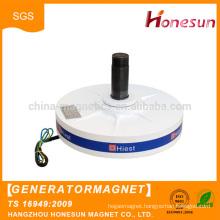 Good quality High Performance Permanent Magnet Generator
