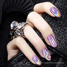 Holographic Powder Rainbow Chrome Nails Powder Manicure Pigment Top Grade